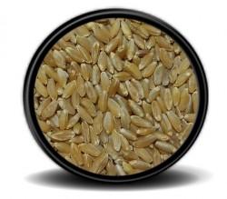 Hobi - Hobi Makarnalık Buğday 25kg