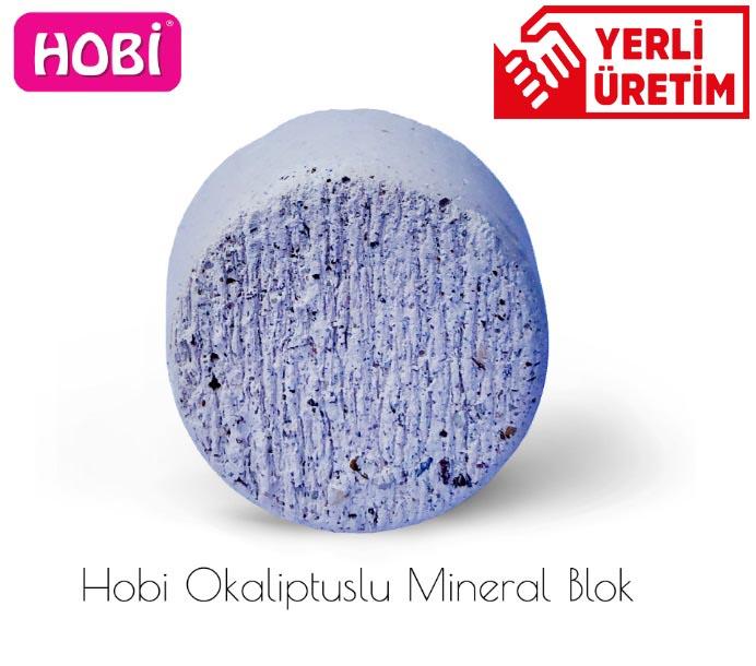 Hobi Okaliptuslu Mineral Blok Gaga Taşı 12 Adet